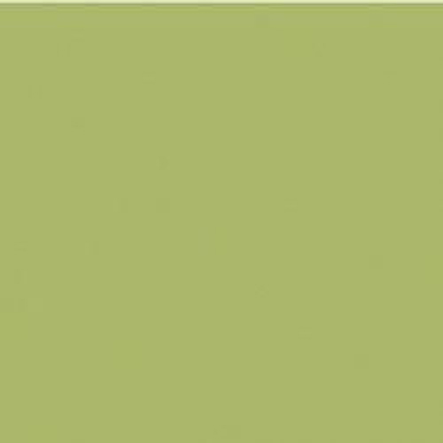 Couleur-Domaterra-NEXT17-mante religieuse