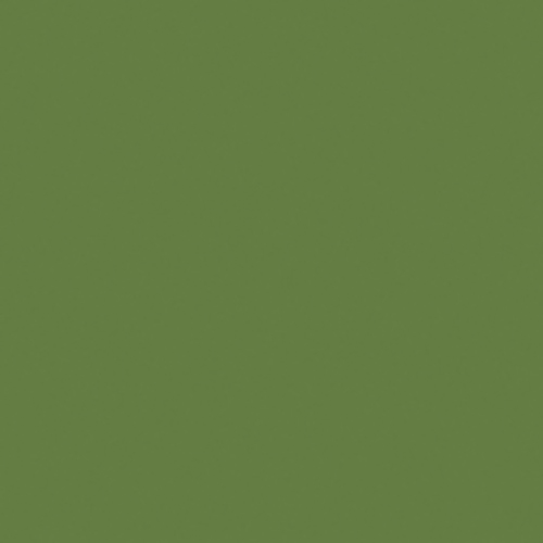 Couleur-Domaterra-TD121F-palmier