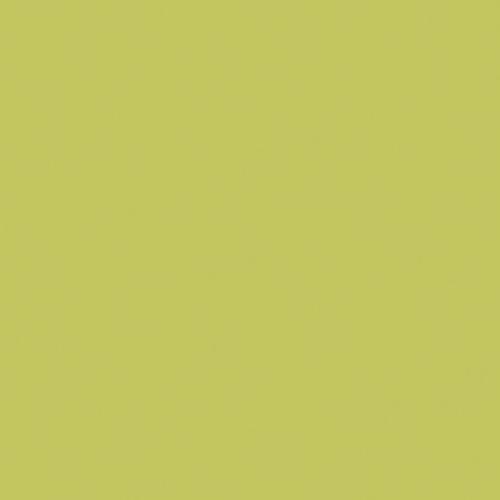Couleur-Domaterra-TD129F-fougère