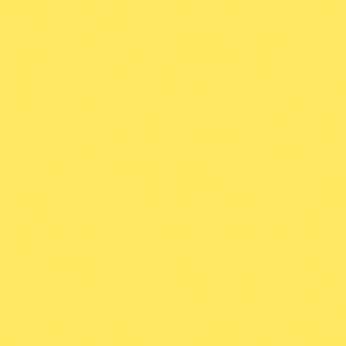 Couleur-Domaterra-TD199C-mimosa