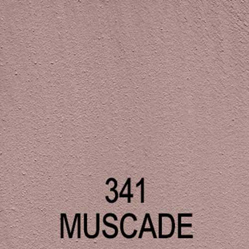 Couleur-toupret-341-muscade